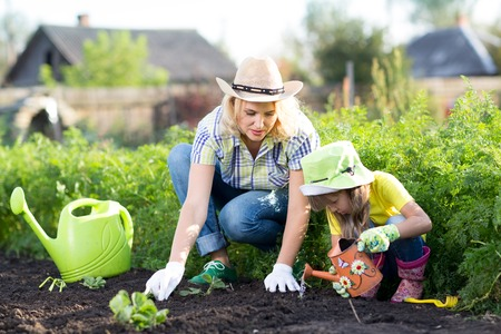 home garden: Woman and child girl, mother and daughter, gardening together planting strawberry plants in the garden