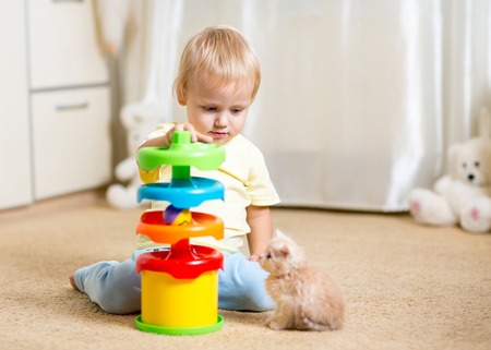 kitten: Cute child boy plays with a kitten, an interior Stock Photo