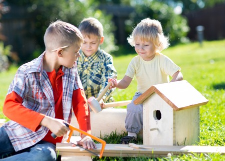 tinkering: Little boys friends making together wooden nest box in summer green park Stock Photo