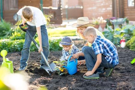 sembrando un arbol: Mujer con tres niños hijos de plantar un árbol y regarla juntos
