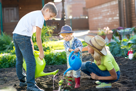Little boys watering plant with his mother
