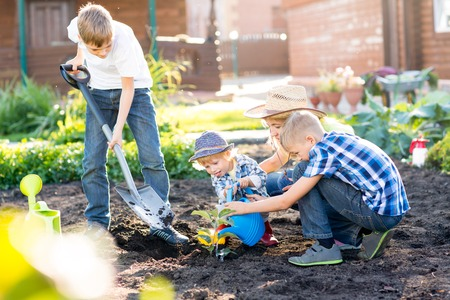 plantando un arbol: Mother with her children sons planting a tree and watering it together