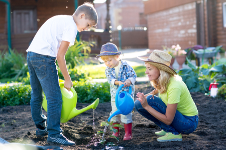 family garden: Mother with children sons planting a tree and watering it together in garden