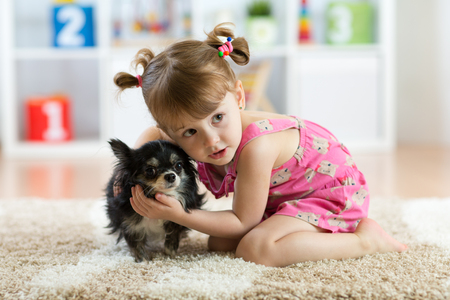 Little girl with Chihuahua dog in children room. Kids pet friendship