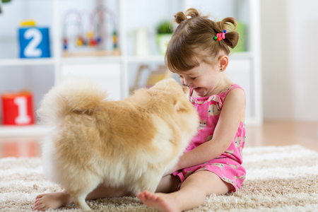Funny kid with dog Spitz at home