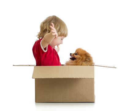 cardbox: Smiling child playing with dog in cardbox isolated on white background