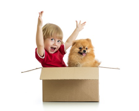 cardbox: Cheerful child boy and dog in cardbox isolated on white background Stock Photo