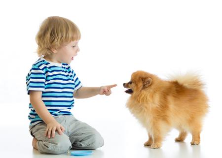 Child boy training Spitz dog. Isolated on white background. Stock Photo