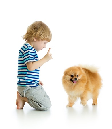 Child boy training Spitz dog. Isolated on white background. Stock Photo