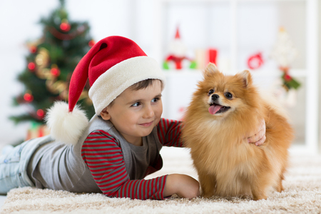 Joyeux petit garçon et chien comme cadeau à Noël. Intérieur de Noël Banque d'images