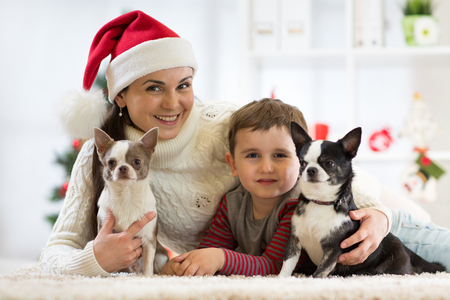 Happy family Christmas. Mother, son and dogs celebrating winter holidays at home. Stock Photo