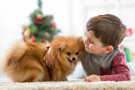 Little kid boy with dog lying on the floor at christmas tree Stock Photo