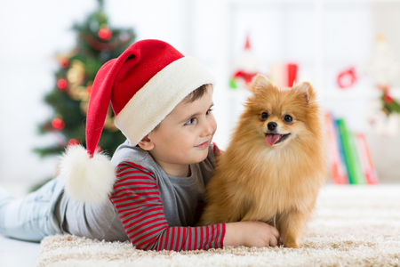 Little boy embracing puppy dog at Christmas, New year background.