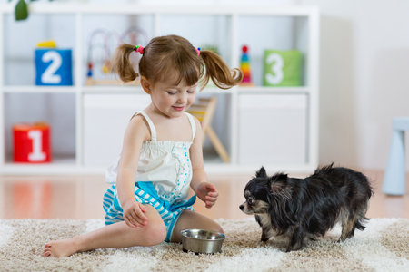 Adorable little girl feeding cute dog Stock Photo