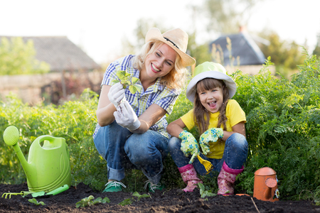Mother and daughter planting strawberry seedlings in summer time