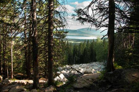 Forest in rocky terrain on a mountain top in summer Russia, Chelyabinsk Region, Zyuratkul Range Stock Photo