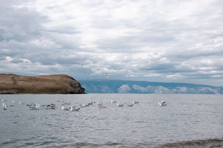 View of Lake Baikal in Siberia with a cape, cloudy sky, the opposite shore with mountains and seagulls in summer afternoon