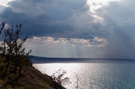 Lake Baikal in cloudy weather with clouds and sunbeams and a flying seagull above the water in summer