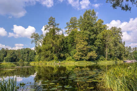 grew: an island on the lake, the island grew tall trees Stock Photo
