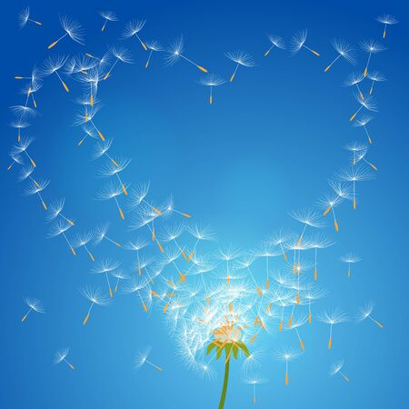 seeds: Vector flower dandelion on a wind loses the integrity forming loveai
