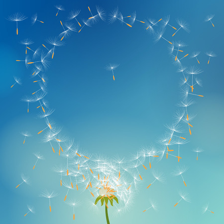 Vector dandelion with seeds flying away with the wind forming round frame