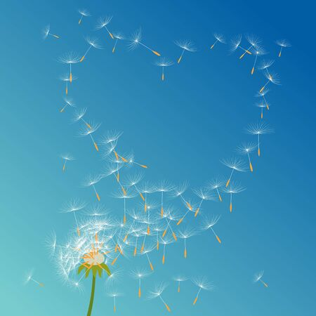 seeds: Dandelion flower vector on a wind loses the integrity forming love Illustration