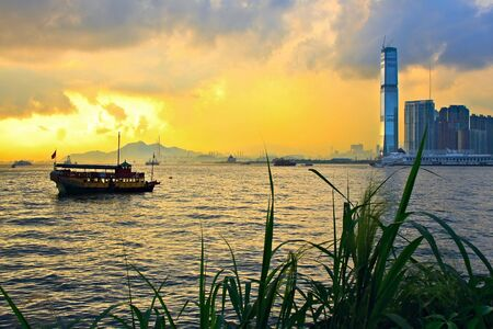 Hong Kong sunset skyline with grass silhouette in the front photo