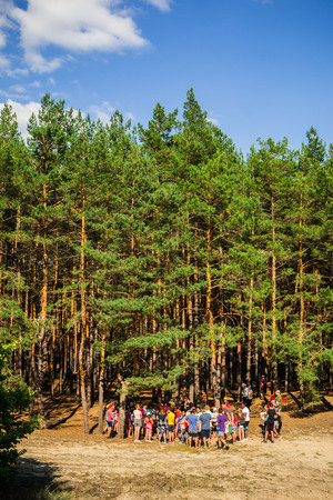 Young People in Forest wide vertical
