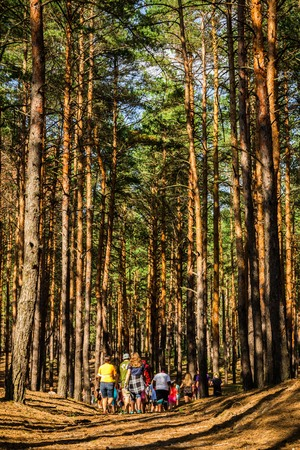 Teenagers Among the Pines