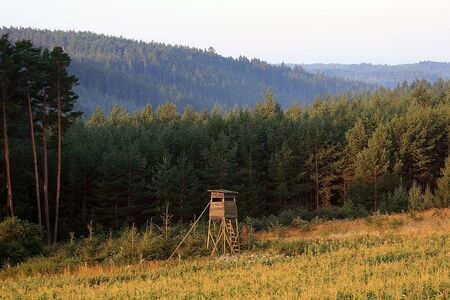 Rig for hunting wild boar and ROE deer on the forest background in the Czech Republic,