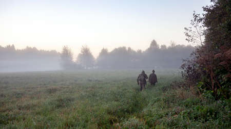 Hunters go in the morning in the fog along the edge of the forest. Two men in camouflage with weapons go through the meadow to the hunting site.