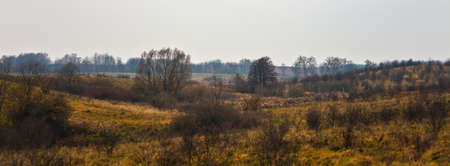 View of the landscape of overgrown meadows in late autumn. A cloudy day in the field hunting grounds in early November. Russia,