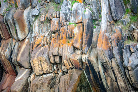 Colored rock wall with vegetation and lichens in Tsitsikama Park. Texture of multicolored lichens and rocks in the rain forest area of a national Park in South Africa. 스톡 콘텐츠 - 155170706