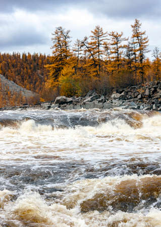 Rough water flow between the rocky shores on the Siberian river in autumn. Landscape with dark clouds over a fast taiga river in September.
