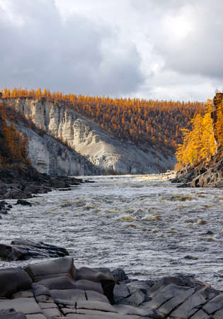 Stormy stream among the rocks on the Siberian taiga river in autumn. Dark clouds over the rapid river with yellowing larches on the steep banks. 스톡 콘텐츠