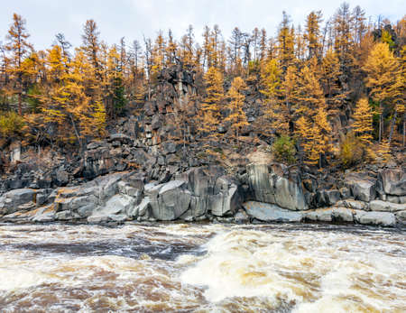 View of the rocky shore of the wild rapid Siberian river in autumn. Siberian fast clean river with larch taiga on steep banks. 스톡 콘텐츠