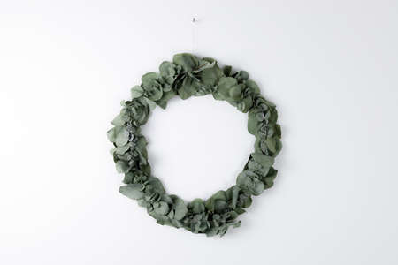 Straight shot of a green eucalyptus wreath made of eucalyptus leaves and twigs hanging on a white and uniform wall, use as simplistic design element