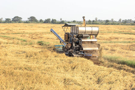 Harvest Car in the rice field photo