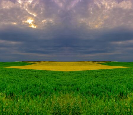 Surrealistic spring countryside with green yellow fields before sunset Banco de Imagens