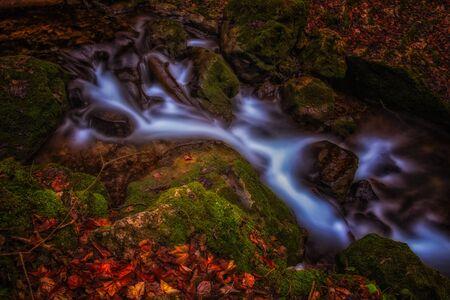 small stream/creek surreal fantasy,dark mossy forest, long exposure Banco de Imagens - 128585655