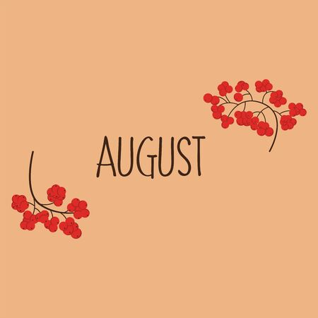 August background with rowan branches. Vector illustration