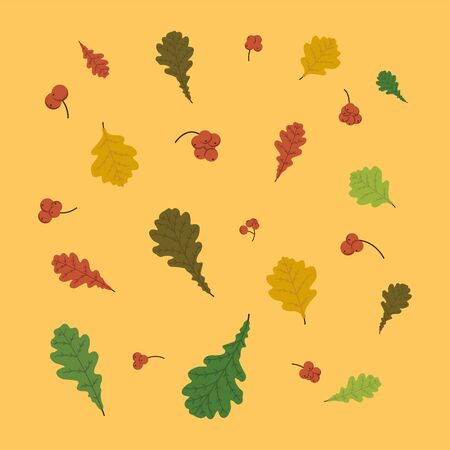 Orange background. Illustration. Autumn leaves set with oak. Berries of Rowan. Fall leaf design. Foliage forest leaf. Red, Green, brown and yellow falling leaves