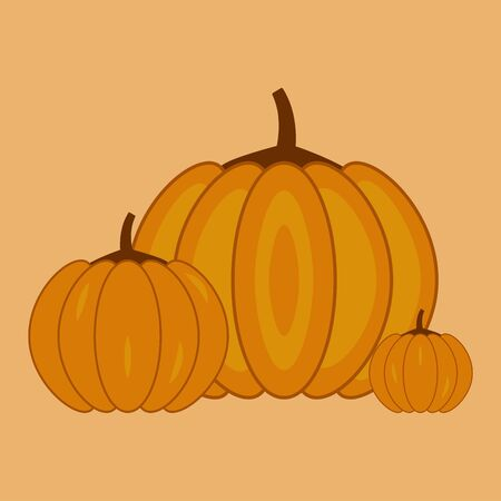 Autumn pumpkins of different sizes. Concept holiday illustration. Halloween. Harvesting