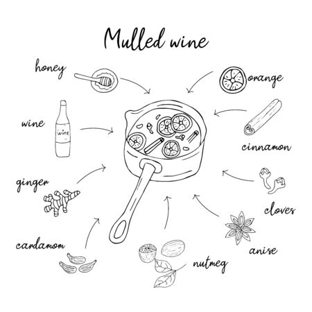 Mulled wine recipe in doodle style, hot drink in winter, poster for cafe, menu. Spice set, cardamom, cinnamon stick, nutmeg, anise star, honey, ginger, orange. Warming drink. Illustration On a white background