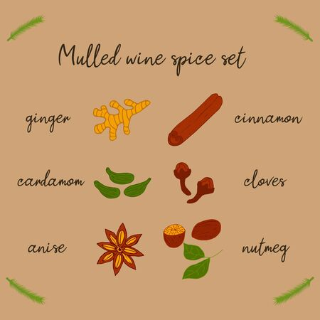 A set of spices for mulled wine. Beige background with sprus twig. Food illustration hand drawn
