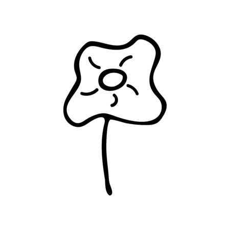 Chamomile black and white illustration in doodle style. Field beautiful flower, spring and summer