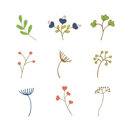 Set of spring and summer flowers and twigs on a white background. Colorful illustration