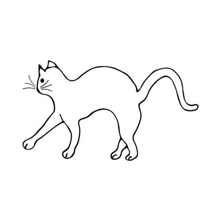 Doodle cat arched his back, black and white illustration on white background. Cute animal goes forward vector Vektoros illusztráció