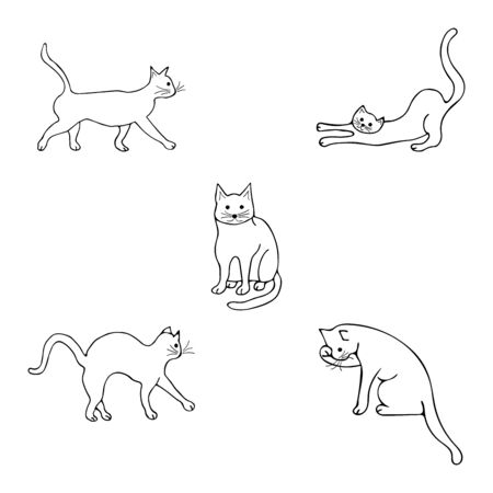 Set with cats in different poses. Goes forward, washing, arched his back, sitting and looking straight, stretching and sharpening claws. Doodle black and white illustration vector on white background. Cute animal Illustration