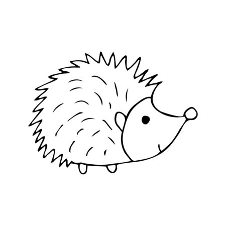 Cute hedgehog black and white doodle illustration on white background. Forest animal with prickly needles